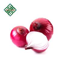 oignons rouges chinois en vrac