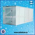 Kundenspezifische Kühlgeräte für Kühlräume in Größe und Stil