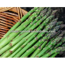 whole iqf green asparagus