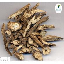 Extracto de raíz de anémona natural de la mejor calidad Extracto de raíz de anémona de Radix Pulsatillae Extracto de Chinensis