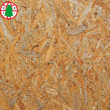 OSB board 15mmx2440mm x 1220mm ( OSB 3)