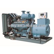 Природный газ 250KVA для продажи