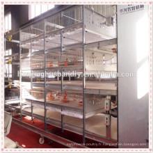 Matériel de volaille berceau de poulet / cage de poulet à vendre