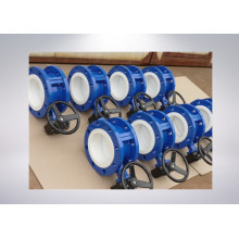 Two PCS PTFE Lined Flange Butterfly Valve