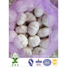 8kgs Loose Mesh Bag Packing Normal White Garlic
