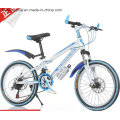 """Ly-C-600 20"""" Cool Mountain Bike for Children"""