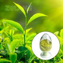 USDA органических Маття зеленого чая порошок