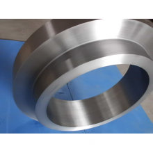 Stainless Steel Ring Forging (DH003)