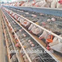 Poulailler spécial galvanisé A type cage à poules pondeuses