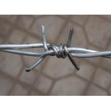 Bwg16 Single Electric Galvanzied Barbed Wire