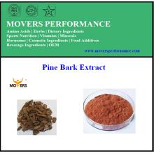 Extracto de corteza de pino natural puro Proantocianidinas 95%
