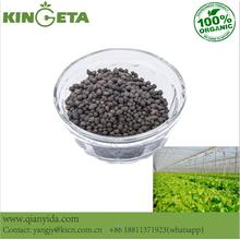 Carbon Based Slow Release Fertilizer Agricultural Use
