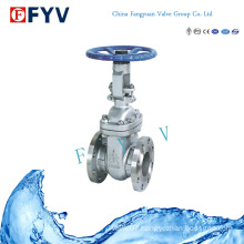API6d Stainless Steel Gate Valve with Manual