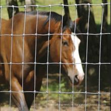 Pferd verzinktes Graslandzaun mit niedrigem Preis