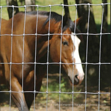 Horse Galvanized Grassland Fence with Low Price
