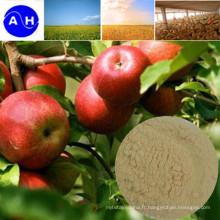 Engrais foliaire pour fruits (poudre d'acides aminés pour engrais)