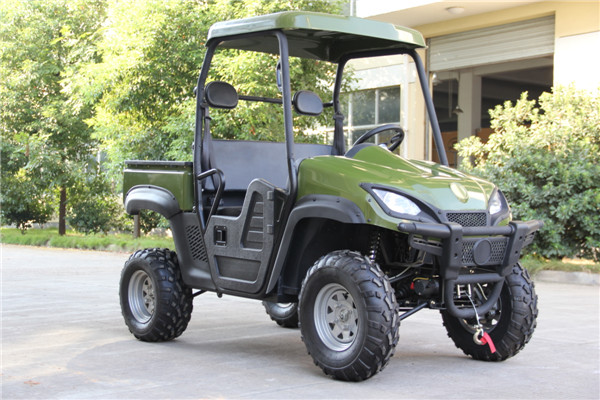 2015 New 5000 W Electric UTV