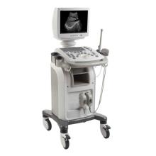 Ultrasons numérique système de Diagnostic Portable