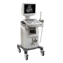Digital Ultrasound Diagnostic System Portable