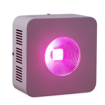 200W LED Grow Light para el cultivo de plantas de invernadero