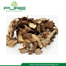 100% Natural Raw Herb Poria Cocos
