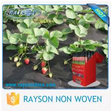 Venta al por mayor 35gsm TNT agricultura no tejida invernadero y cubierta de cultivos y rollo de paño de la tela de la cubierta de fresa