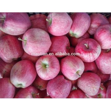 2017 fresco vermelho estrela apple