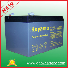 Bateria profunda do ciclo AGM 12V14ah para o veículo utilitario