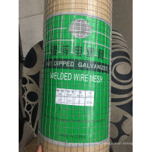 High Quality Square Hole Galvanized Welded Wire Mesh