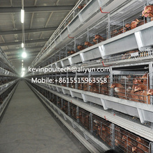 New Design Low Price H Type Battery Layer Cages