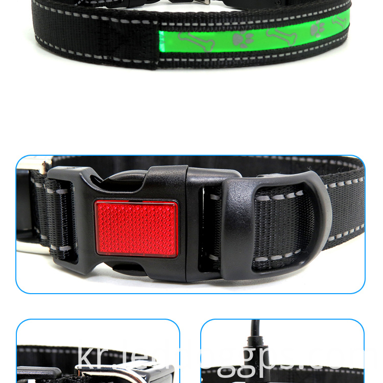 Dog Collars Glow In The Dark