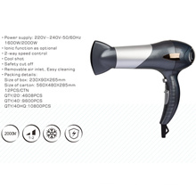 Dual Voltage 2000W Hair Dryer for Salon Professional
