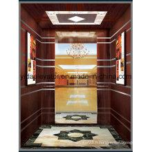 Ascenseur de passager avec traction sans engrenage et petite salle de machine (JQ-B015)