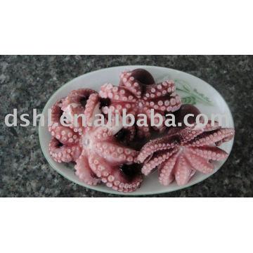 Cook Octopus