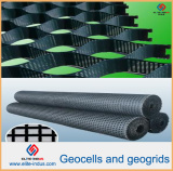 Product List of Plastic PP HDPE Pet Geogrid Geocell