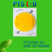 30W/40W/50W AC COB LED haute qualité 110V 220V sans conducteur