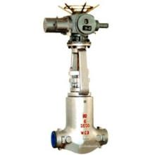 Мощность станции высокая температура задвижки (Z941H)
