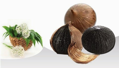 single black garlic (21)
