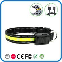 Night Safety Pet Dog Training Collars Light
