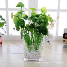 Vente en gros Vase en verre clair Grand vase décoration de la maison