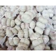 white garlic hot sale