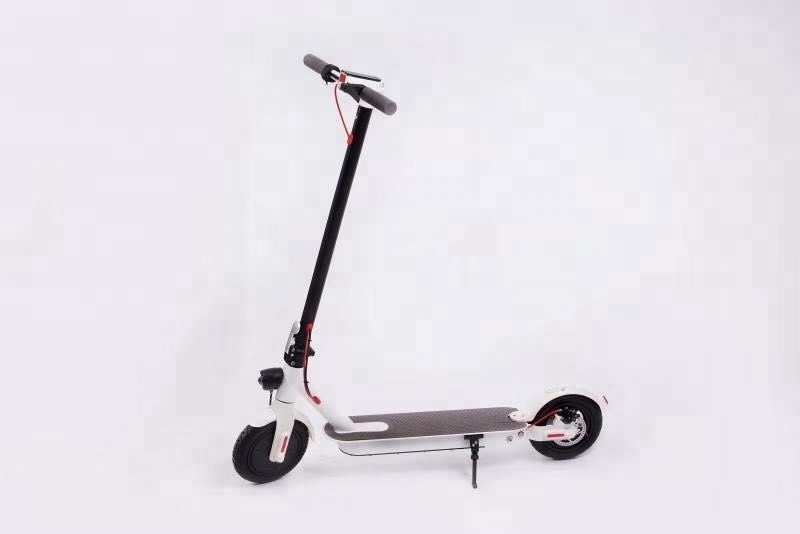 board Scooter Electric