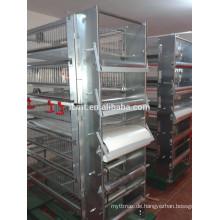 China verkaufen automatische Wachtelkäfige und Ausrüstung