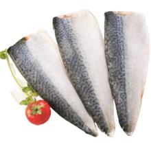 Emballage sous vide de filet du Pacifique de maquereau de poisson congelé
