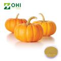 Pumpkin Seed Extract (Cushaw Seed) Powder