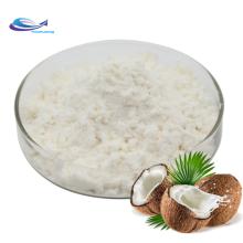 Poudre de lait de coco pur biologique pour le vrac
