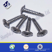 China experienced supplier stainless steel cross recess screw