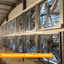 Ventilador de refrigeração elétrico da casa das aves domésticas da galinha para o sistema de controlo do ambiente