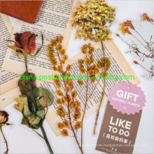 Natural Gift Flower Design for Decoration Pet Stickers