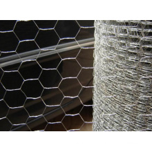 Hex. Mesh/Hexagonal Wire Mesh